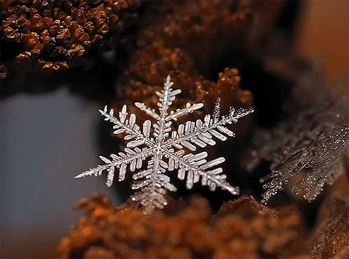hópehely